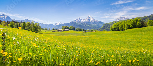 Foto op Plexiglas Pistache Idyllic landscape in the Alps with blooming meadows in summer