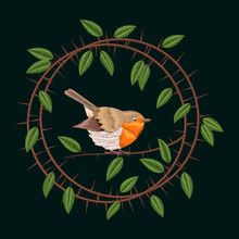 Embroidery Blackthorn Branches And Robin Bird. Vector Illustrations Vintage Design