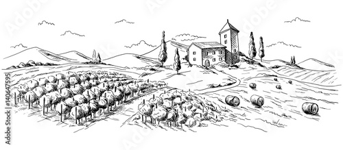Fotografía panorama coffee plantation landscape in graphic style hand-drawn vector illustration