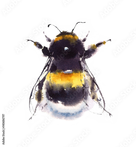 Watercolor Bumblebee Hand Painted Summer Illustration isolated on white backgrou Fototapete