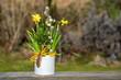 Ostergruß, kleines Blechtöpfchen mit einer Feder dekoriert, bepflanzt mit Osterglocken und Palmkätzchen