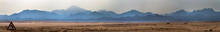 The Desert And Mountains