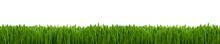 Gras Textur Als Hintergrund Pa...