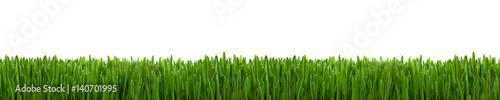 Deurstickers Gras Gras Textur als Hintergrund Panorama