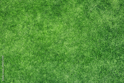 Photo sur Toile Herbe Green grass texture