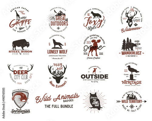 Wild animal badges set. Included giraffe, owl, fox and deer and other shapes. Full set. Stock vector isolated on white background
