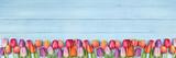 Fototapeta Tulipany - Tulpen auf Holz