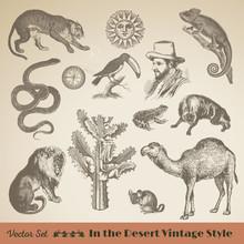 Set Of Wild Life: Vintage Dese...