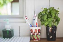 Toothbrush Holder By Houseplan...