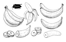Banana Set Vector Drawing. Iso...