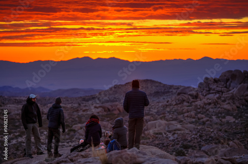 Dawn in the desert of Joshua Tree California Fototapet