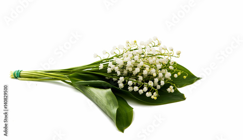 Wall Murals Lily of the valley flowers isolated