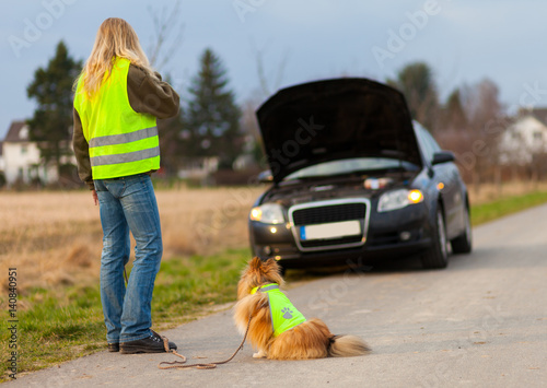 Fotografía  woman and a dog with reflective vest stands on a broken car