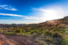 Off Road Track In The Arizona Desert's Table Mesa Recreation Area - The Bradshaw Mountains Lit By Late Winter Afternoon Sunshine