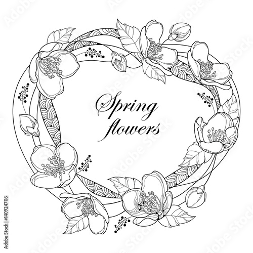 Vector Round Frame With Outline Jasmine Flowers Bud And Leaves Isolated On White Background
