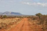 Fototapeta Sawanna - Savana road