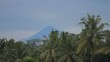 White birds fly in the sky. Mountain in the background, Winter rainy season on Bali island, Indonesia.