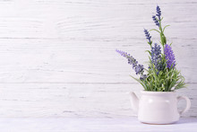 Lavender Flowers In Watering C...
