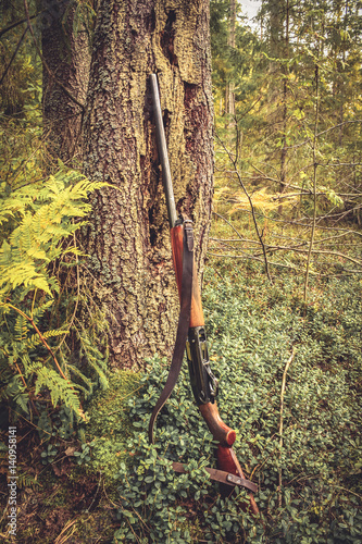 Foto op Aluminium Jacht Gun at tree trunk in forest during hunting season
