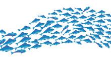 School Of Fish Vector Illustra...