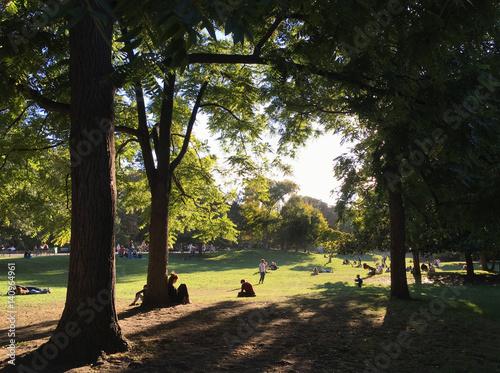 Photo  Parc Monceau Fall Meadow Paris France
