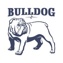 British Bulldog Mascot Emblem ...