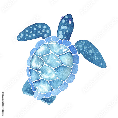 Leinwand Poster sea life. Watercolor sea turtle isolated on white background