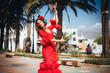 Leinwandbild Motiv flamenco in spain