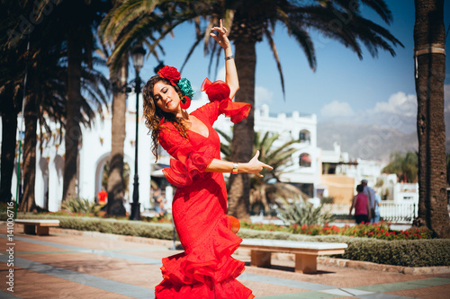 Photo  flamenco in spain