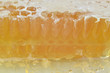 Shallow DOF macro of honeycomb cross section with honey suitable for background