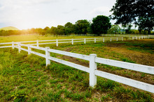 White Concrete Fence In Horse ...