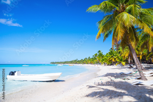 Foto op Plexiglas Caraïben Coconut palms and white pleasure boat