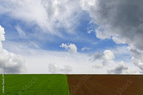 pola-uprawne-i-piekne-niebo-z-chmurami