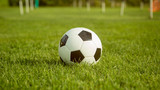 Fototapeta Sport - soccer ball lie in lawn field in summer day before friendly match