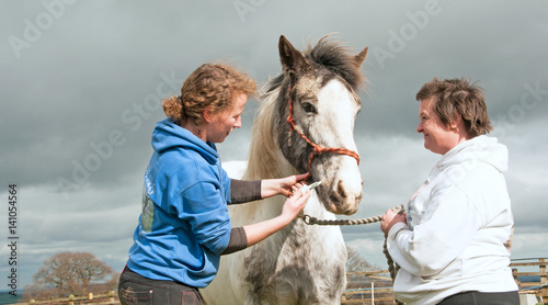 Routine wormer being administered to a horse Canvas Print