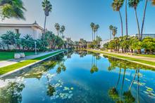 Pond In Balboa Park