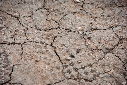 Fotografie, Obraz  Terreno arido e secco