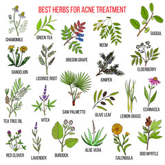 Panel SzklanyCollection of herbs for acne treatment