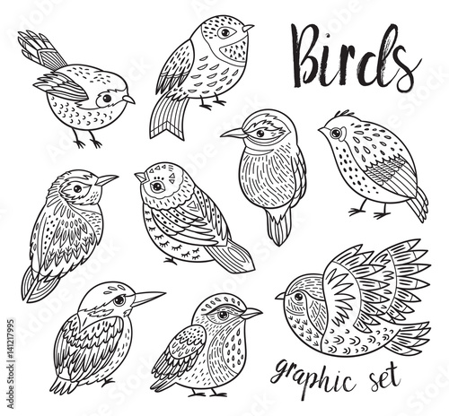 Graphic set with hand drawn exotic birds. Line art design Wallpaper Mural
