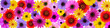 Leinwanddruck Bild - Beautiful flowers on a white background