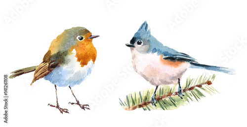 Northern Cardinal and Robin Two Birds Watercolor Hand Painted Illustration Set i Canvas Print