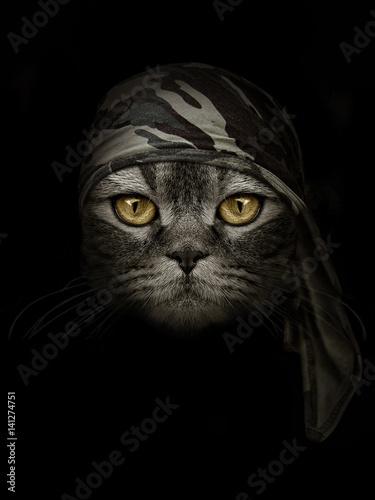 Cadres-photo bureau Croquis dessinés à la main des animaux dark muzzle cat in brown camouflage Headband