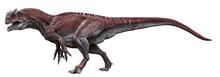 3D Rendering Of Allosaurus Wal...