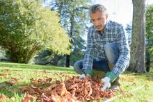 Gardener Collecting Dead Leaves