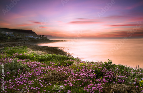 Printed kitchen splashbacks Purple A field of colorful flowers with sea and sunset at the background, Milatos, Crete, Greece.