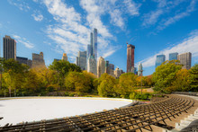 Central Park At Autumn.  Midto...