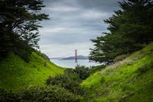 Golden Gate Through The Trees. California, United States.