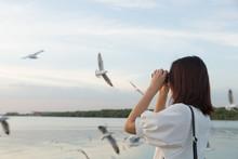 Woman Watching Bird Watching By The Sea.