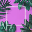 Leinwanddruck Bild - Creative minimal arrangement of leaves on pink background with white frame. Flat lay. Nature concept.