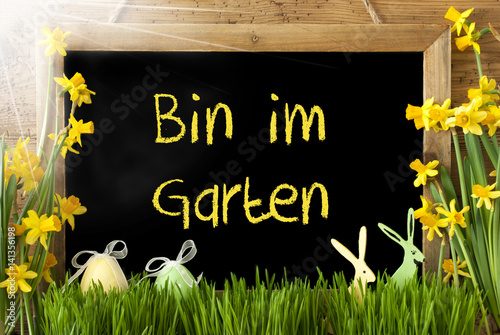 Sunny Narcissus Egg Bin Im Garten Means In The Garden Kaufen Sie